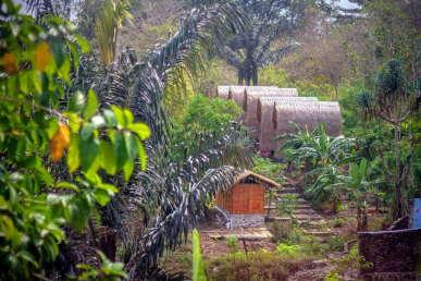 accommodation-jungle-food-tour-sten-lodge-labuan-bajo-komodo