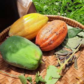 cacao-from-garden-dapur-tara-flores-restaurant-komodo