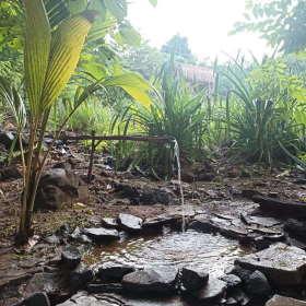 water-love-2-sten-lodge-dapur-tara-flores-labuan-bajo-komodo