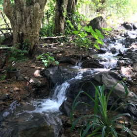 water-love-sten-lodge-dapur-tara-flores-labuan-bajo-komodo